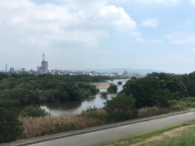 矢作川の中州1
